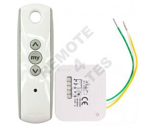 Receiver Kit SOMFY Lighting RTS
